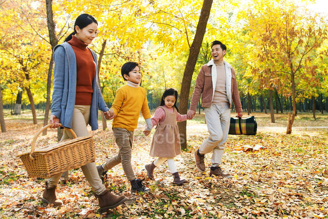 Happy young asian family with two children holding hands and walking on picnic in autumn park — Stock Photo