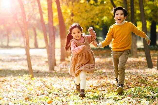 Adorable feliz asiático niños corriendo juntos en otoño bosque - foto de stock