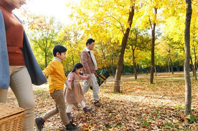 Cortado tiro de feliz jovem asiático família segurando as mãos e caminhando juntos no outono floresta, vista lateral — Fotografia de Stock