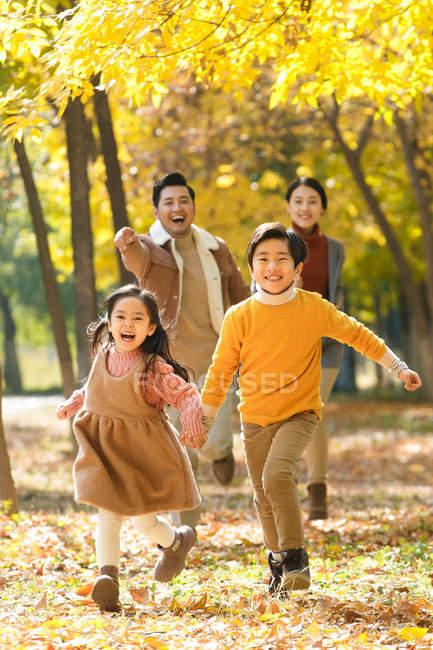 Padres jóvenes felices y niños lindos corriendo en el bosque de otoño - foto de stock