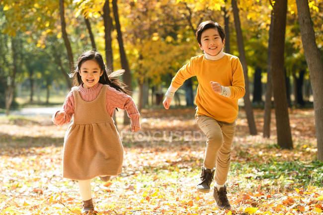 Asian feliz adoráveis crianças sorrindo para a câmera e executando juntos na floresta de outono — Fotografia de Stock