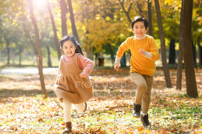 Очаровательные счастливые азиатские дети, бегущие вместе в осеннем лесу — стоковое фото