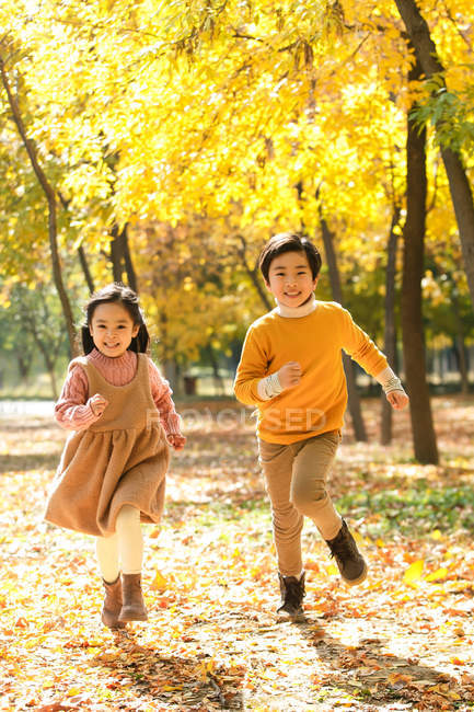 Adorable happy siblings running together in autumn forest — Stock Photo