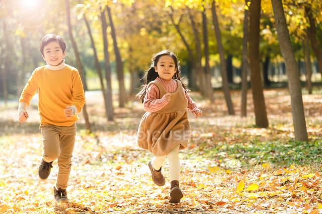 Прелестный счастливый азиатский брат и сестра, бегущие вместе в осеннем лесу — стоковое фото