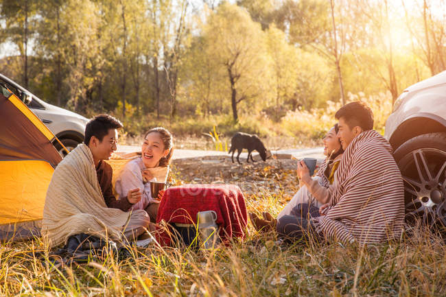 Four asian friends drinking tea and talking at camping place in autumnal forest — Stock Photo
