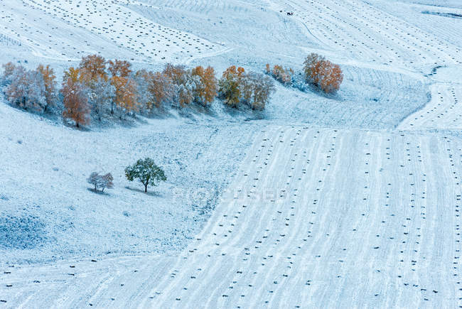 Beautiful winter landscape in Inner Mongolia — Stock Photo