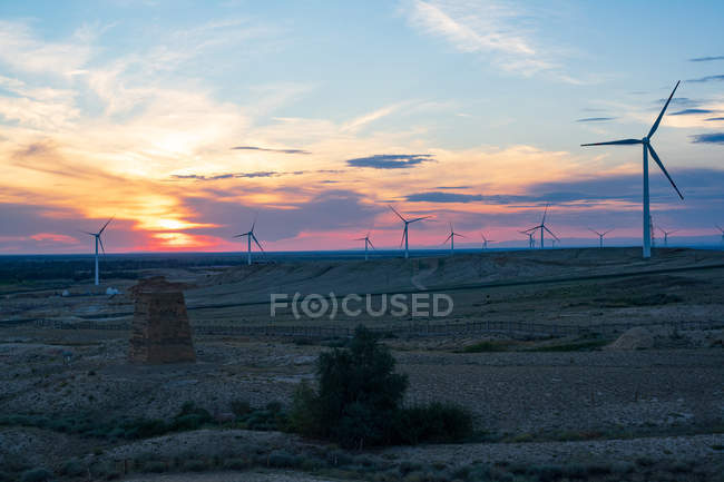Beautiful beach scenery with windmills at sunset, Xinjiang, China — Stock Photo