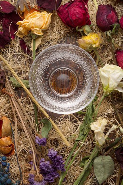 Верхній вид красивих різних розташованих сухих квітів і скла — стокове фото