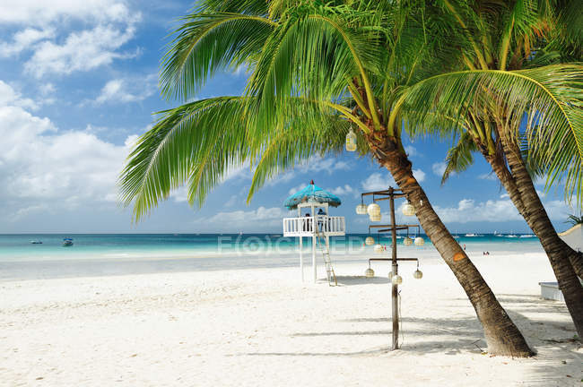 Beautiful palm trees at sandy beach at Boracay island, Philippines. — Foto stock