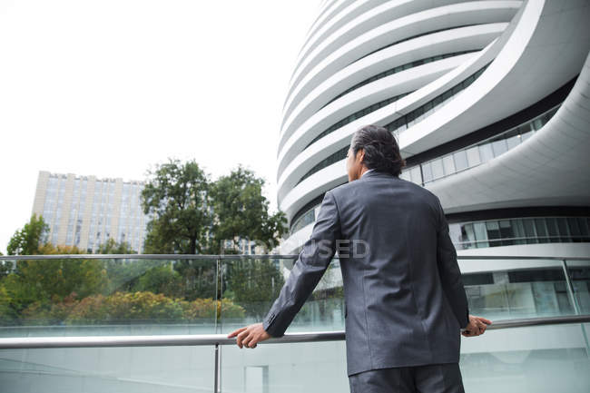 Back view of mature businessman leaning at railing and looking away — Fotografia de Stock