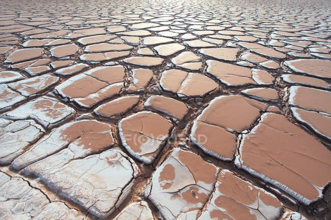 Vista quadro completo de chão rachado seco em Xinjiang kashgar — Fotografia de Stock