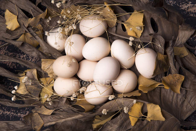 Top view of eggs with dry autumn leaves on soil — Stock Photo