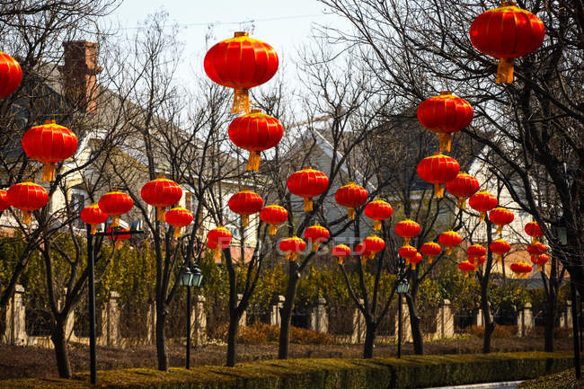 Traditional red chinese lanterns hanging above road — Stock Photo
