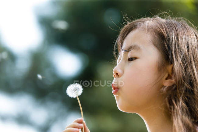 Adorable asian kid blowing dandelion outdoors — Stock Photo