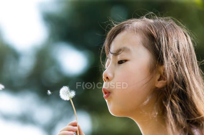 Чарівні Азіатська дитина дме кульбаби на відкритому повітрі — стокове фото