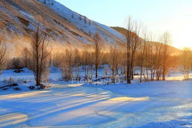 Schöner Sonnenuntergang in winterlicher Landschaft mit kahlen Bäumen und schneebedeckten Hügeln — Stockfoto