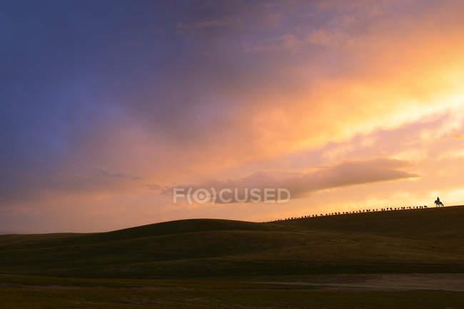 Paisagem incrível com nascer do sol cênico na pastagem — Fotografia de Stock
