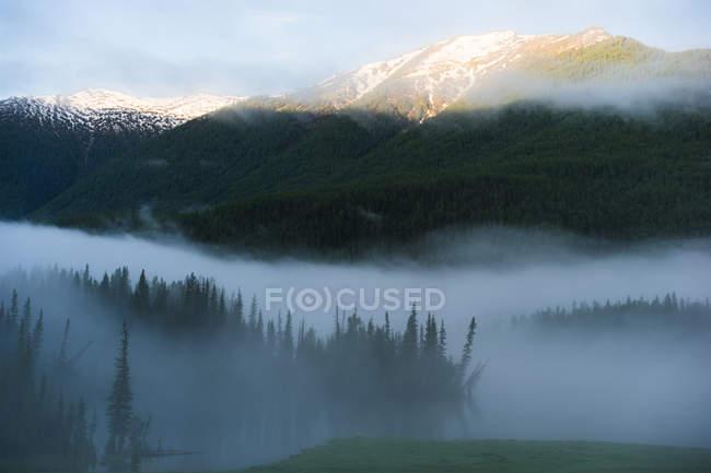 Красивый пейзаж с горами в тумане, Канас, Синьцзян, Китай — стоковое фото
