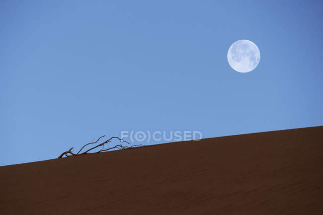 Amazing landscape with sand in desert and full moon in blue sky — Stock Photo