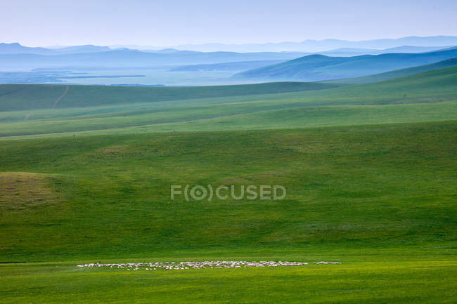 Beau paysage avec des montagnes et la prairie verte, Huolingguole, Mongolie intérieure, Chine — Photo de stock