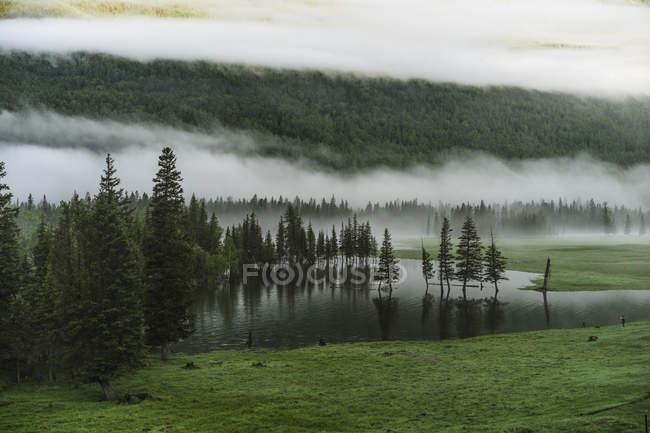Красивый пейзаж с горами, лесом и озером, Канас, Синьцзян, Китай — стоковое фото
