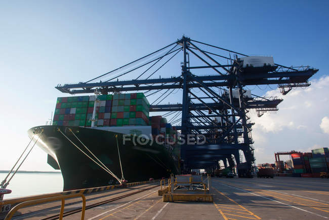 Cranes and cargo containers in harbor at Shenzhen, China — Stock Photo