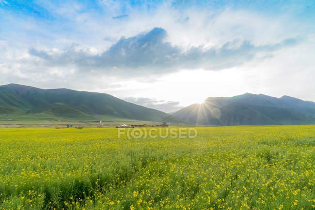 Красивий краєвид з гори і зелений плато в Менюань, Цинхай, Китай — стокове фото