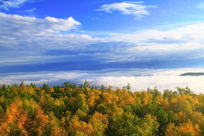Beautiful autumn landscape with Greater Khingan Range, Heilongjiang Province, China — Stock Photo