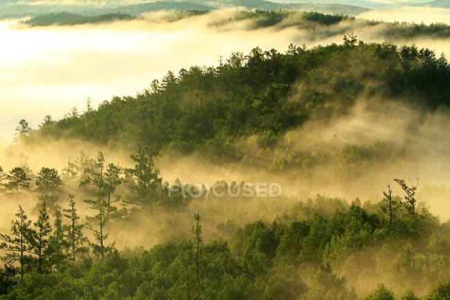 Aerial view of Greater Khingan Range scenery of Heilongjiang Province, China — Stock Photo