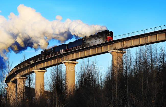 Baixa visão angular do trem com vapor na ponte durante o dia — Fotografia de Stock