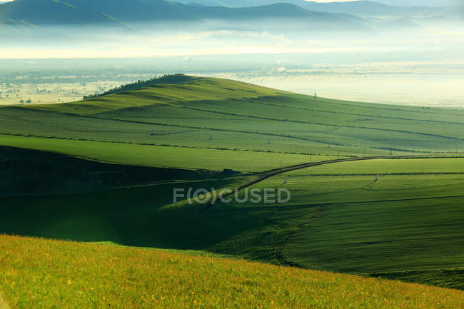 Amazing landscape with green hills covered with lush vegetation, high angle view — Stock Photo