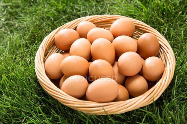 Vue de plan rapproché du panier avec les oeufs frais de poulet sur l'herbe verte — Photo de stock