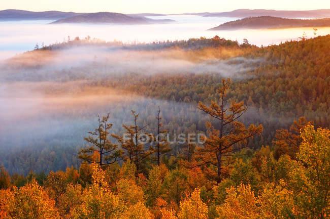Incredibile foresta autunnale nella Grande Catena Khingan, provincia di Heilongjiang, Cina — Foto stock