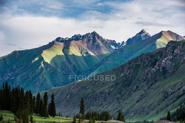 Amazing landscape with beautiful mountains and green trees in valley - foto de stock