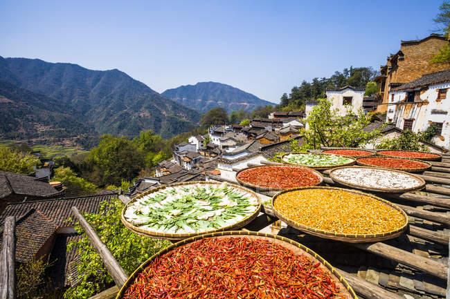 Vista de cerca de especias secándose en el sol de otoño en Wuyuan, Jiangxi, China - foto de stock
