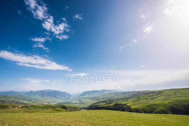 Paysage estival avec collines verdoyantes et ciel bleu — Photo de stock