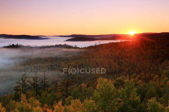 Amazing autumn forest in Greater Khingan Range, Heilongjiang Province, China — Stock Photo