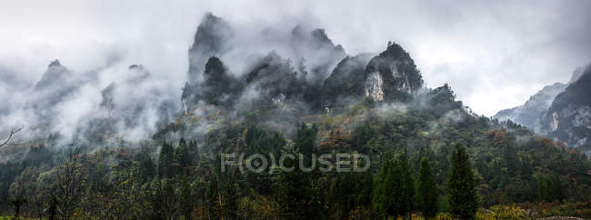 Amazing landscape with green trees and rocky mountains covered with clouds — стокове фото