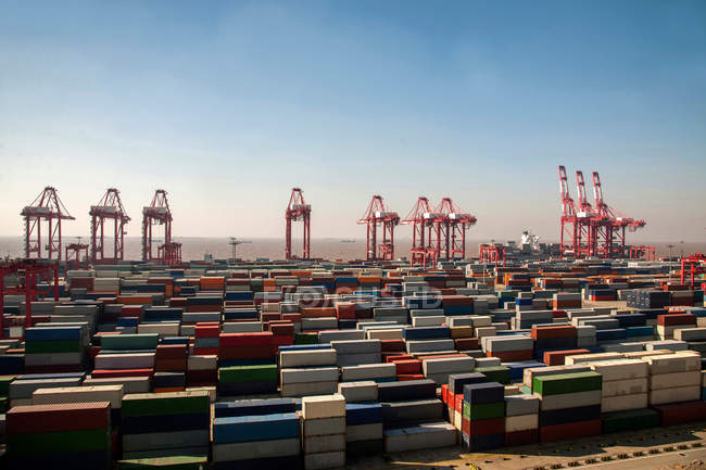 Cranes and cargo containers in harbor at China — Stock Photo