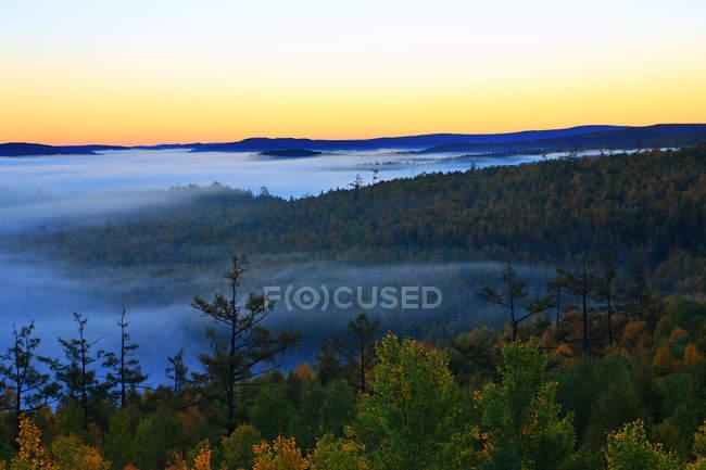 Beautiful autumn forest in Greater Khingan Range, Heilongjiang Province, China — Stock Photo