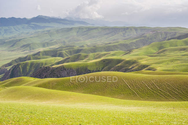 Amazing landscape with scenic hills covered with green vegetation at cloudy day — Stock Photo