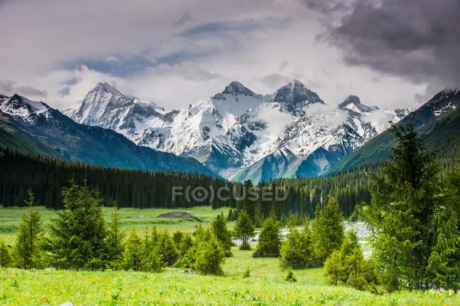 Stupendo paesaggio montano con cime innevate e vegetazione verde a valle — Foto stock