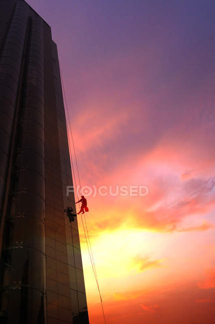 Low angle view of glass cleaner working outside skyscraper during sunrise — Stock Photo