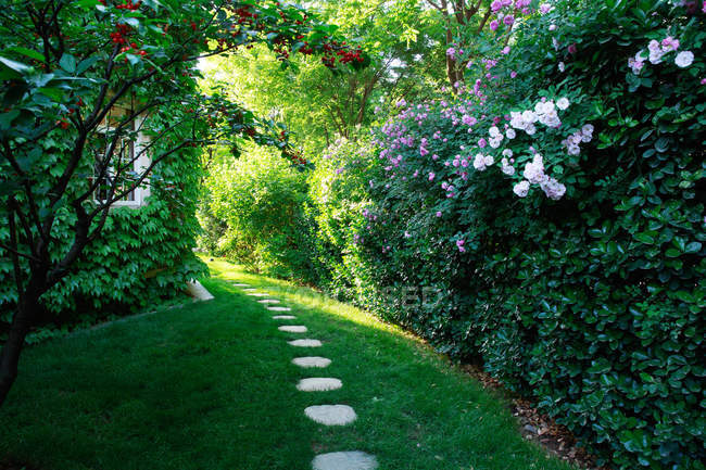 Decorative pathway and beautiful flowering plants at private villa — Stock Photo