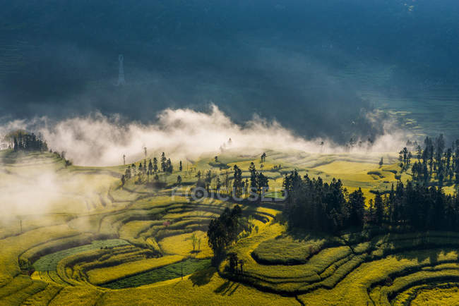 Beautiful landscape with mountains and rape flowers in Luoping County, Yunnan Province — Stock Photo