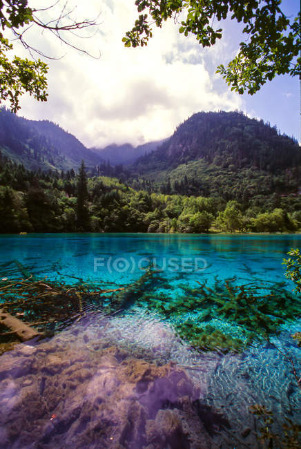 Amazing landscape with calm blue lake and green vegetation in mountains, Jiuzhaigou Province, Sichuan Province, China — Stock Photo