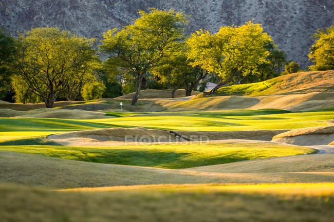 Изумительные лавочки на поле для гольфа и красивые зеленые деревья в солнечный день — стоковое фото