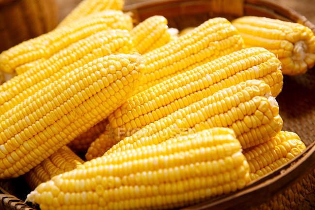 Close-up view of fresh ripe yellow corn cobs — Stock Photo