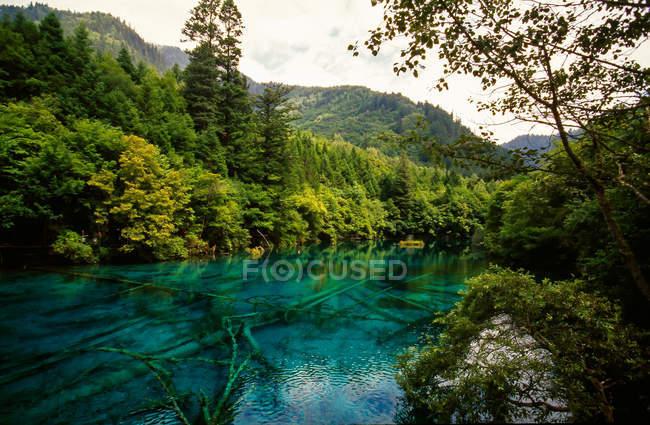 Paysage étonnant avec lac bleu calme et végétation verte dans les montagnes, province de Jiuzhaigou, province du Sichuan, Chine — Photo de stock