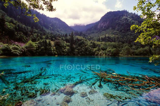Increíble paisaje con tranquilo lago azul y vegetación verde en las montañas, provincia de Jiuzhaigou, provincia de Sichuan, China - foto de stock